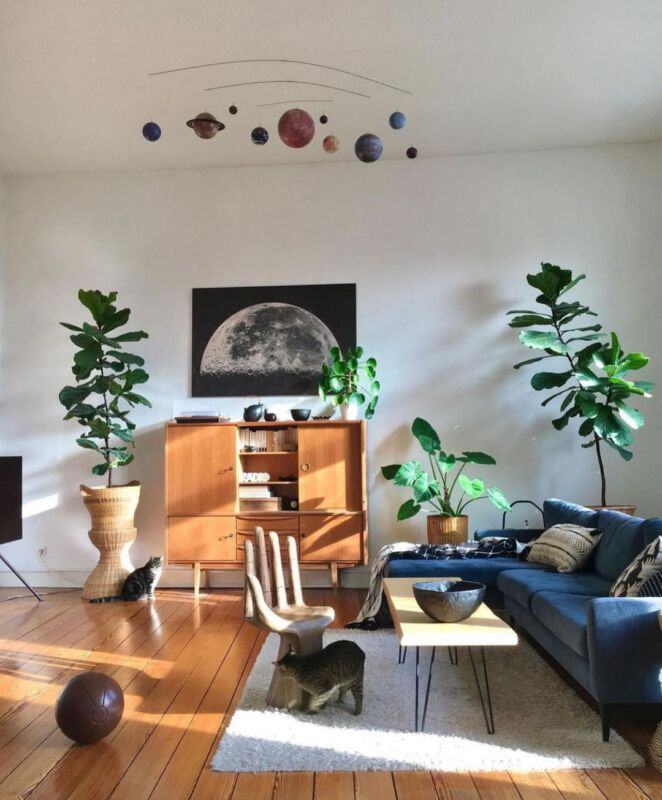 Zimmerpflanzen Dschungel Grüner Daumen Pflanzenpflege Instagram Inspiration
