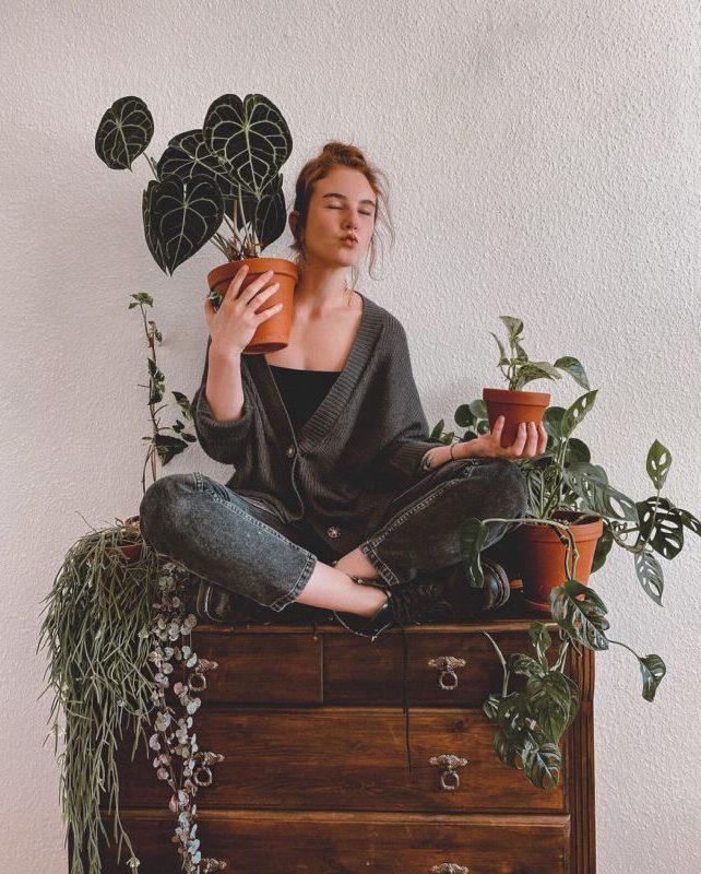 dschungelimherzen Zimmerpflanzen Dschungel Grüner Daumen Pflanzenpflege Instagram Inspiration