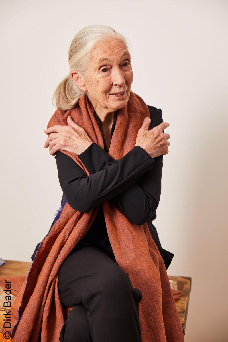 Jane Goodall Interview 2021 Stiftung Charity Heyday Magazine