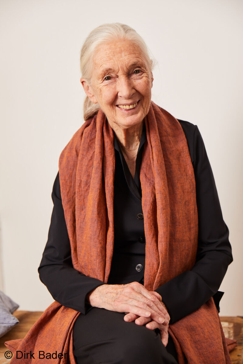 Jane Goodall Interview T-shirt Charity Elemente Clemente