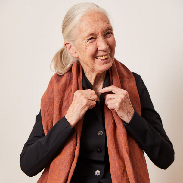 Jane Goodall Interview Charity